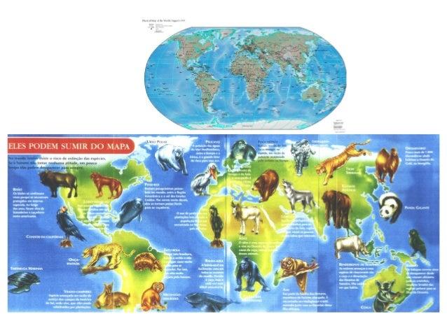 Apresentação plantas do mundo