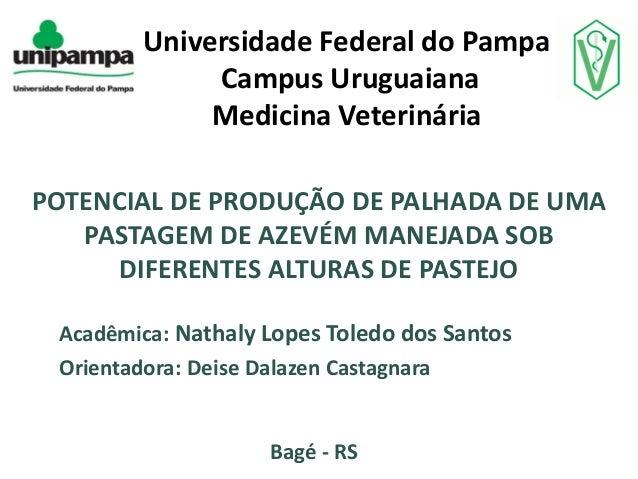 Universidade Federal do Pampa Campus Uruguaiana Medicina Veterinária POTENCIAL DE PRODUÇÃO DE PALHADA DE UMA PASTAGEM DE A...