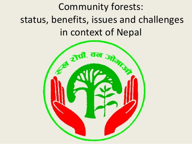 status of forest in nepal Find out about current and projected economic growth in nepal and compare the data with other developing countries in south asia.
