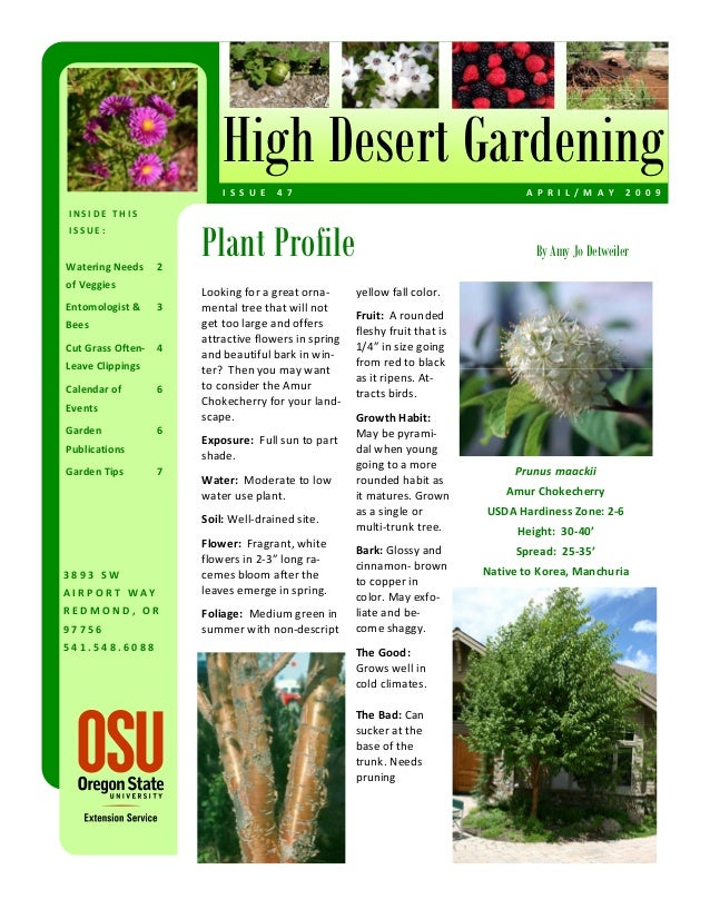 April - May 2009 High Desert Gardening Magazine