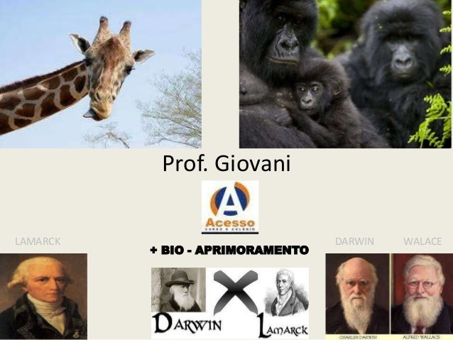 Prof. Giovani LAMARCK  + BIO - APRIMORAMENTO  DARWIN  WALACE