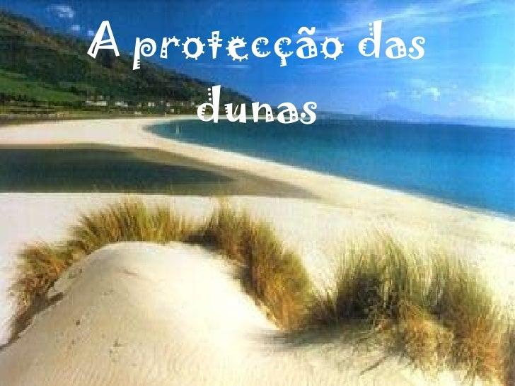 A ProtecçãO Das Dunas