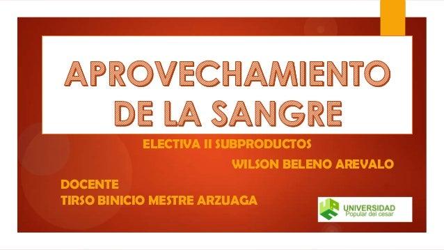 ELECTIVA II SUBPRODUCTOS WILSON BELENO AREVALO DOCENTE TIRSO BINICIO MESTRE ARZUAGA