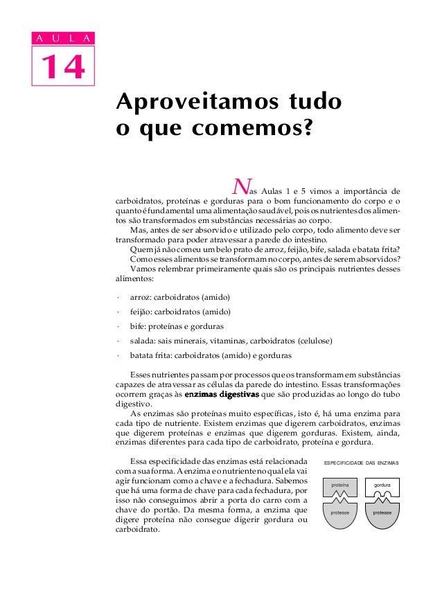 14A U L A14A U L ANas Aulas 1 e 5 vimos a importância decarboidratos, proteínas e gorduras para o bom funcionamento do cor...