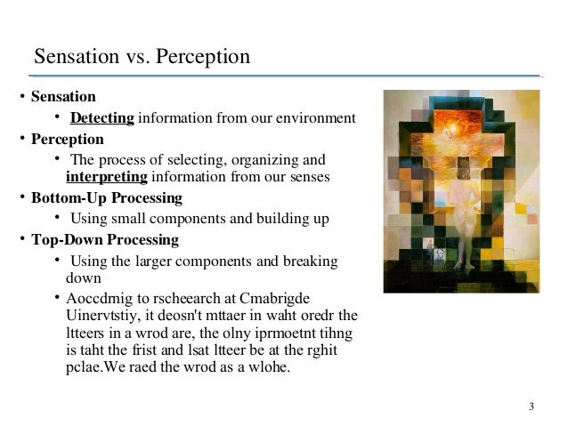 sensation and perception 3 essay Psychologists distinguish between sensation and perception sensation is the pickup of information by our sensory receptors, for example the eyes, ears, skin, nostrils, and tongue in vision, sensation occurs as rays of light are collected by the two eyes and focused on the retina.