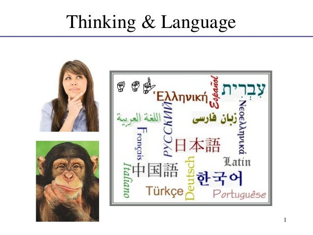 Thinking & Language  1