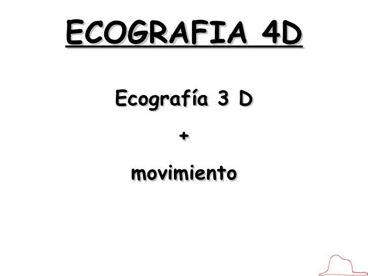 4D. APUNTE