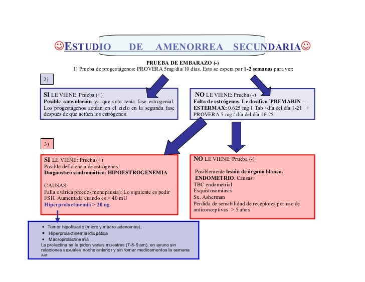 ESTUDIO                          DE           AMENORREA                           SECUNDARIA                            ...