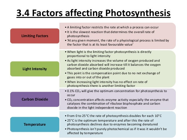 factors that affect the rate of photosynthesis experiment