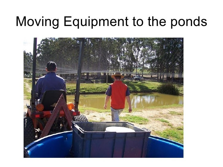 Moving Equipment to the ponds