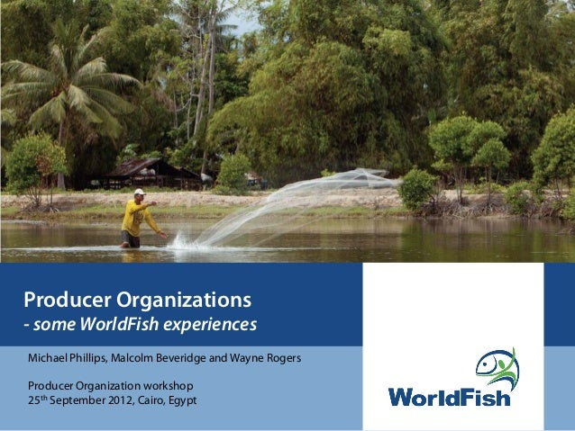 Producer Organizations- some WorldFish experiencesMichael Phillips, Malcolm Beveridge and Wayne RogersProducer Organizatio...