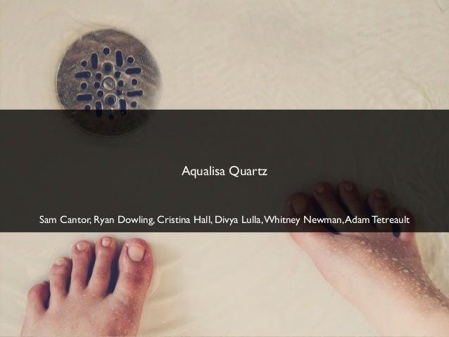 Aqualisa QuartzSam Cantor, Ryan Dowling, Cristina Hall, Divya Lulla, Whitney Newman, Adam Tetreault