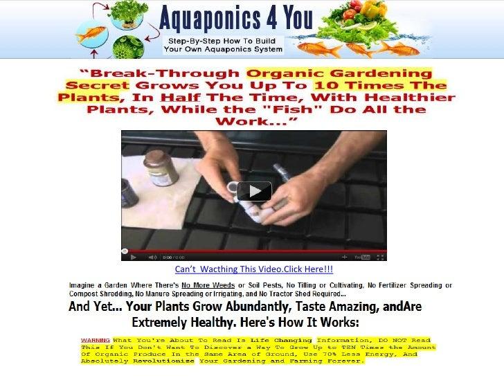 Aquaponics garden