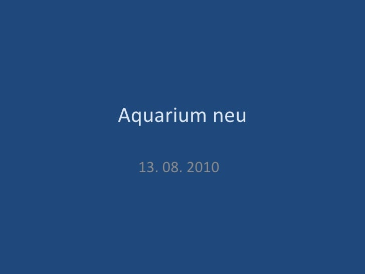 Aquarium neu 13. 08. 2010