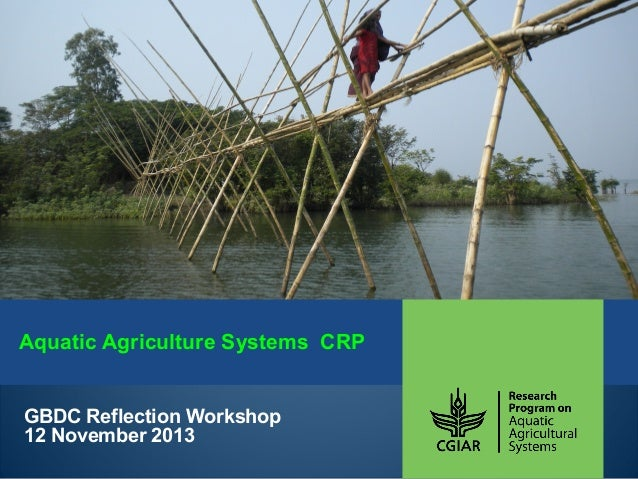 Aquatic Agriculture Systems CRP GBDC Reflection Workshop 12 November 2013