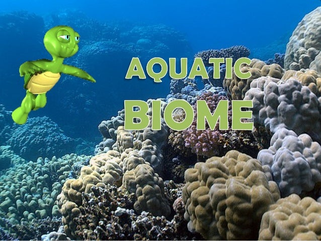 Aquatic Biome • it makes up the largest part of the biosphere • There are two main types of Aquatic Biomes: 1.Freshwater 2...