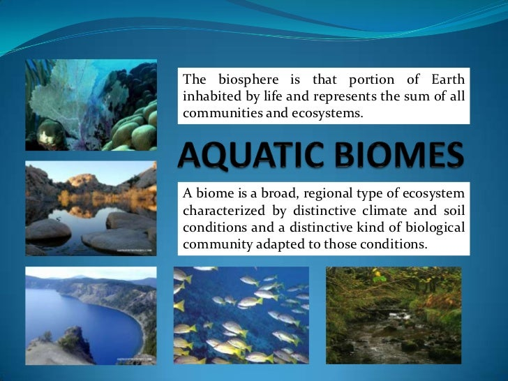 AQUATIC BIOMES<br />The biosphere is that portion of Earth inhabited by life and represents the sum of all communities and...