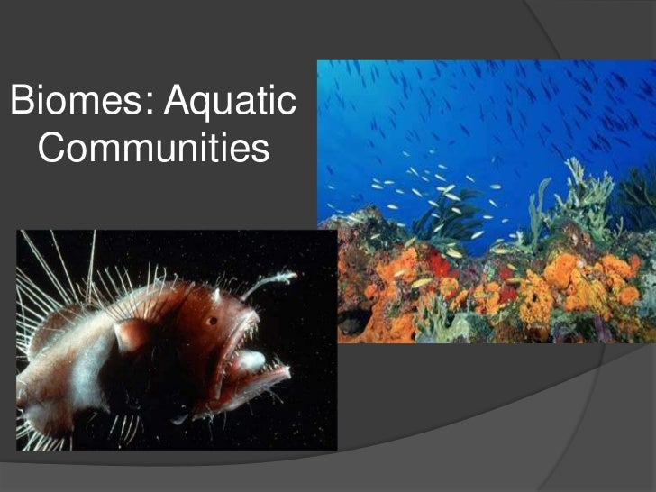 Biomes: Aquatic Communities<br />