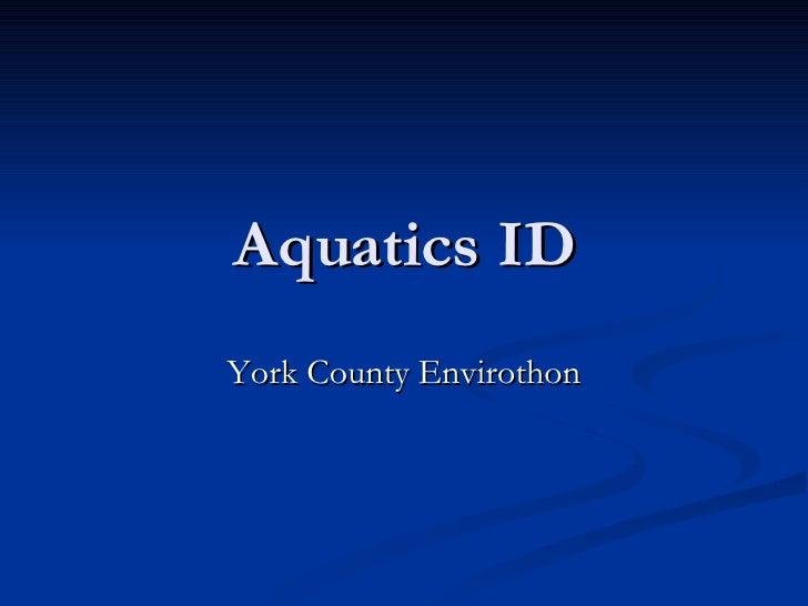Aquautics ID