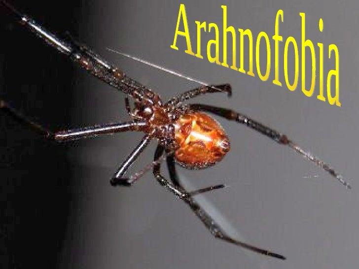 Arahnofobia
