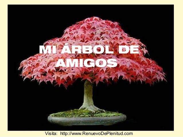 MI ÁRBOL DE AMIGOS  Visita: http://www.RenuevoDePlenitud.com