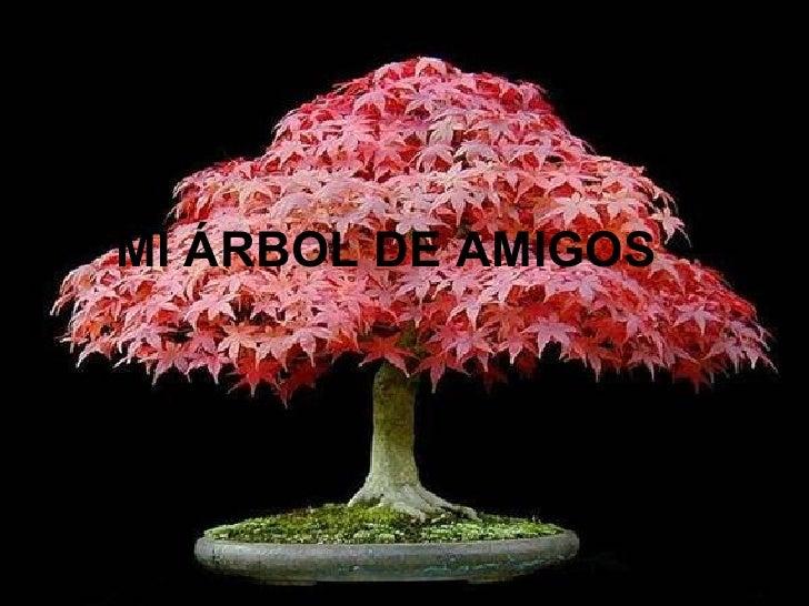MI ÁRBOL DE AMI GOS