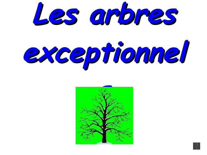 Les arbres exceptionnels