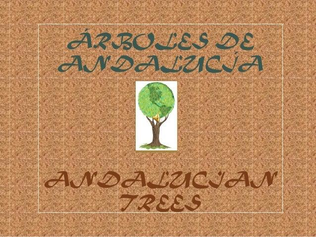 ÁRBOLES DE ANDALUCÍA ANDALUCIAN TREES