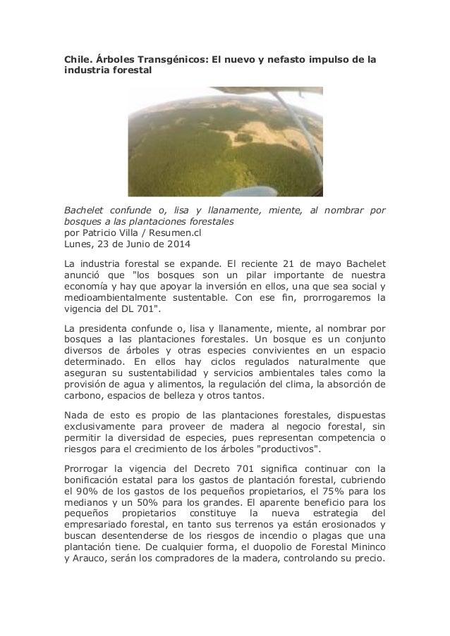 Chile. Árboles Transgénicos: El nuevo y nefasto impulso de la industria forestal Bachelet confunde o, lisa y llanamente, m...