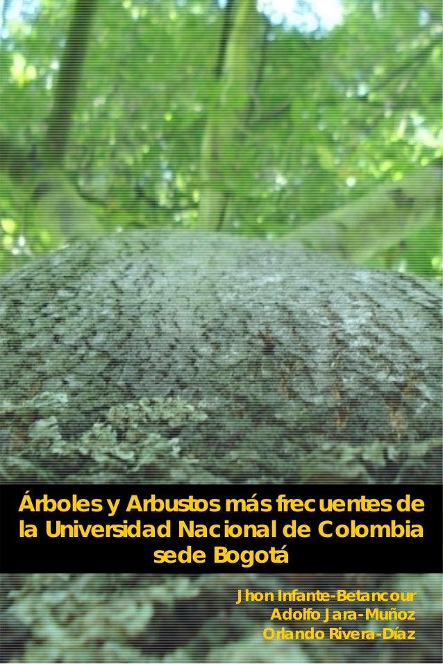 Arboles y arbustos un for Arbustos de jardin fotos