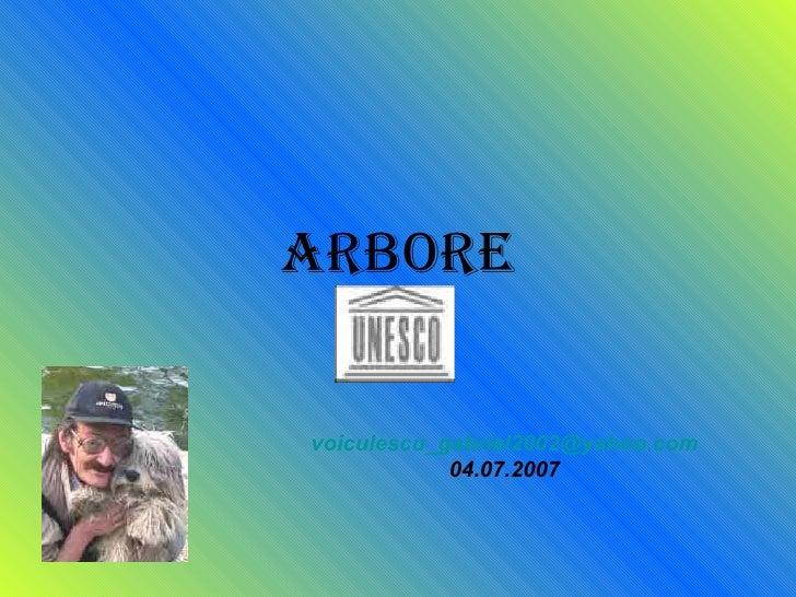 arbore [email_address] 04.07.2007
