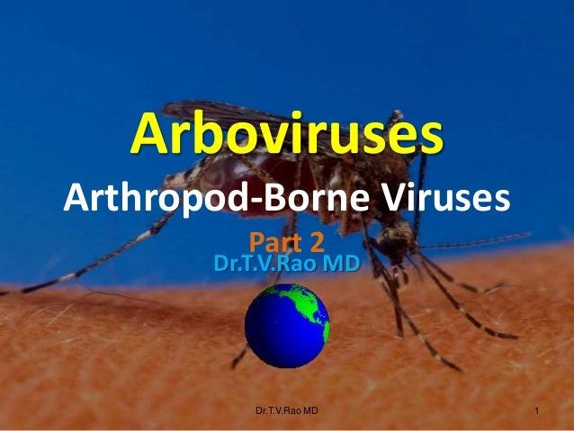 Dr.T.V.Rao MD Dr.T.V.Rao MD 1 Arboviruses Arthropod-Borne Viruses Part 2