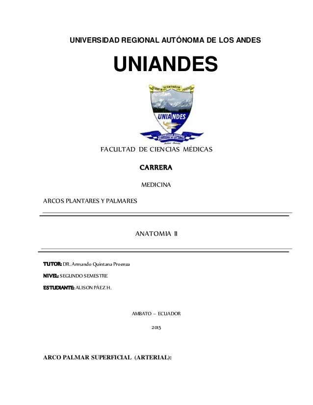 UNIVERSIDAD REGIONAL AUTÓNOMA DE LOS ANDES UNIANDES FACULTAD DE CIENCIAS MÉDICAS CARRERA MEDICINA ARCOS PLANTARES Y PALMAR...