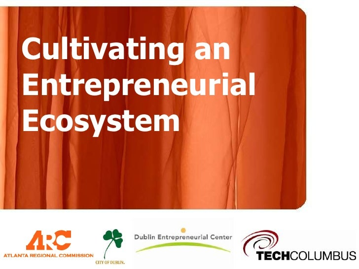 Cultivating an Entrepreneurial Ecosystem