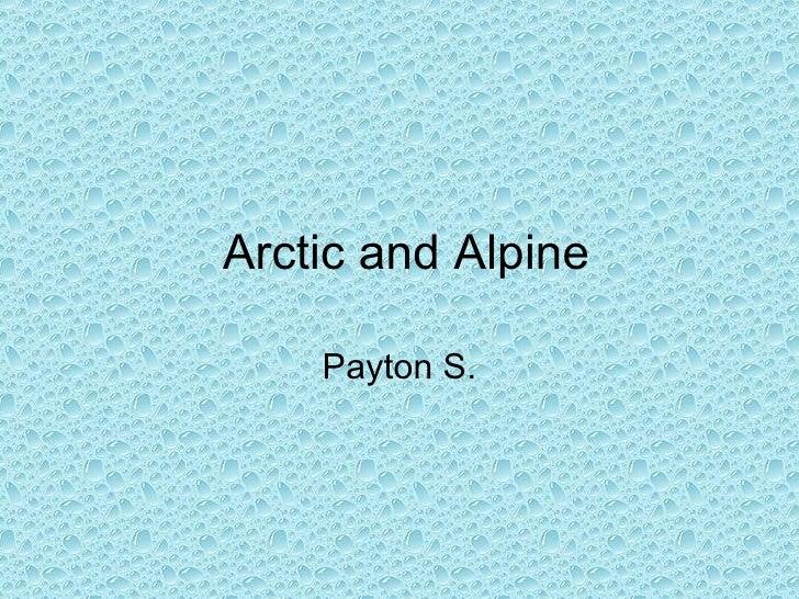 Arctic And Alpine Stinson