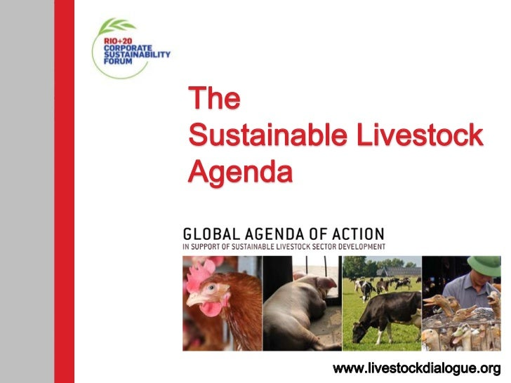 TheSustainable LivestockAgenda          www.livestockdialogue.org