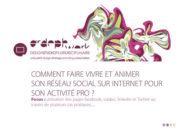 Comment faire vivre et animerson réseau soCial sur internet pourson aCtivité pro ?Focus : utilisation des pages facebook, ...