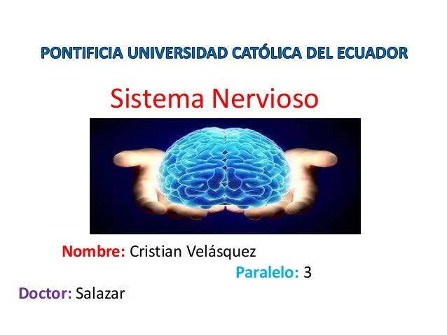 Sistema Nervioso Nombre: Cristian Velásquez Paralelo: 3 Doctor: Salazar