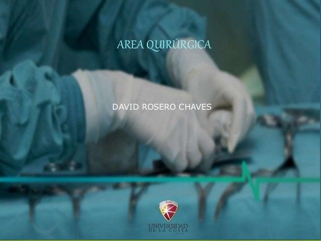 AREA QUIRÚRGICA DAVID ROSERO CHAVES