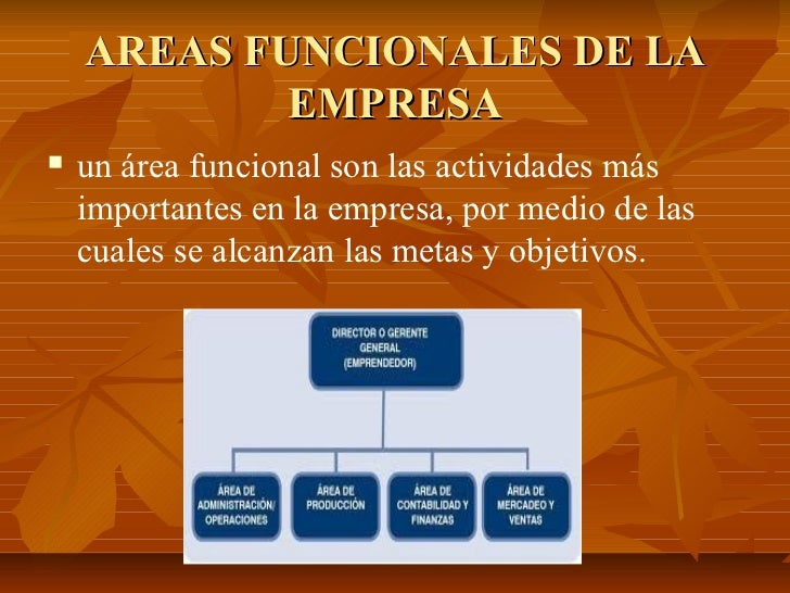 AREAS FUNCIONALES DE LA            EMPRESA   un área funcional son las actividades más    importantes en la empresa, por ...
