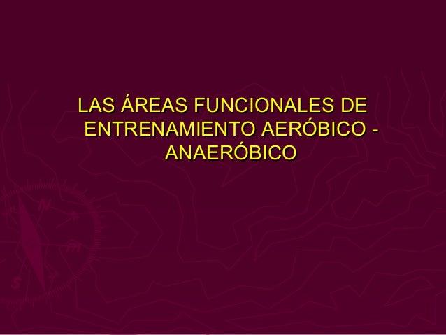 LAS ÁREAS FUNCIONALES DE ENTRENAMIENTO AERÓBICO -       ANAERÓBICO