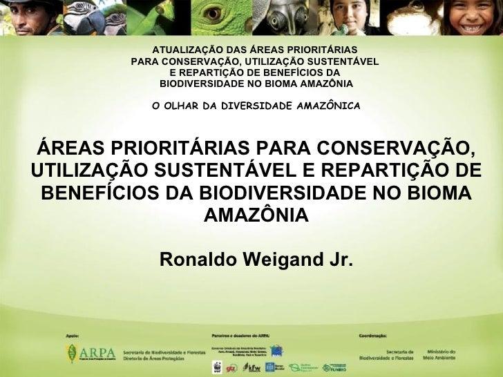 Mapa de Áreas Prioritárias para a Biodiversidade - Amazônia - Ronaldo Weigand