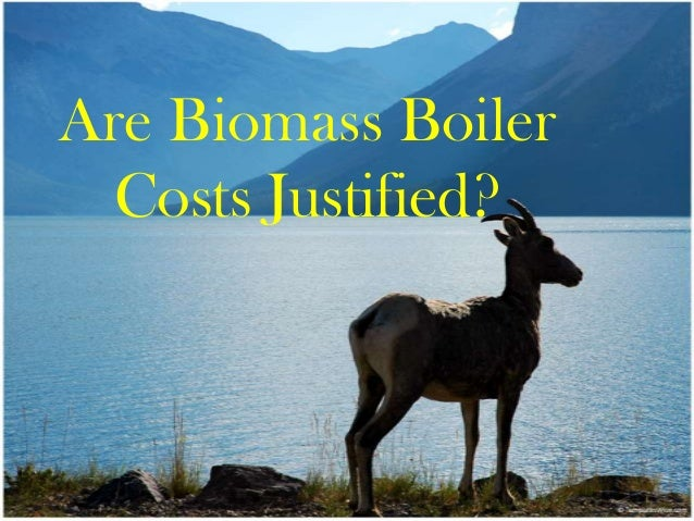 Are biomass boiler costs justified?