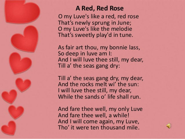 A red red rose essay