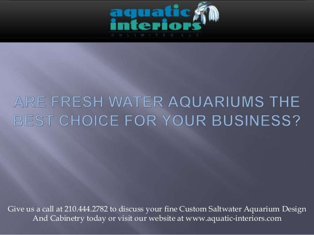 Are fresh water aquariums the best choice for your business