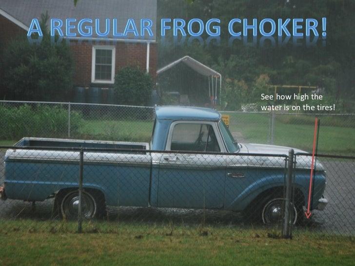 A Regular Frog Choker!