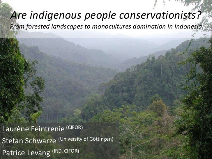 Are indigenous people conservationists?   From forested landscapes to monocultures domination in Indonesia     Laurène Fei...