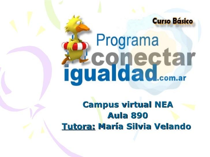 Campus virtual NEA Aula 890 Tutora:  María Silvia Velando