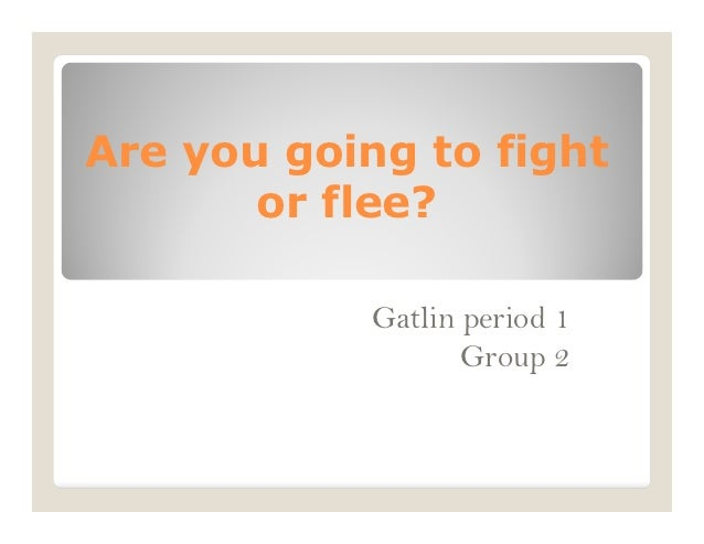 Are you going to fight or flee