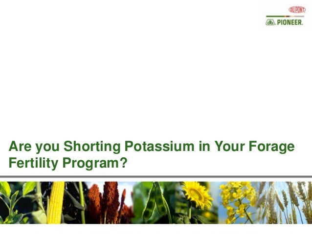 Are you Shorting Potassium in Your Forage Fertility Program?
